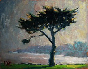 """Lovers Point Cypress"", Catalog# 847, Oil on Canvas, 14""x11"". A single cypress stands tall above the park at Lovers Point."